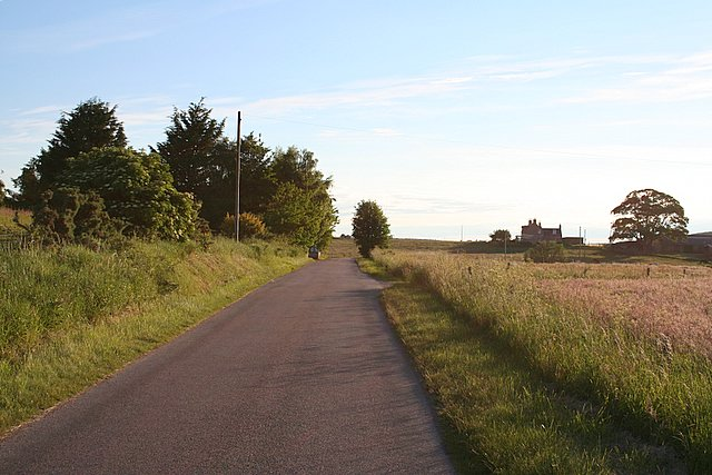 Looking westwards towards Whitefield croft.