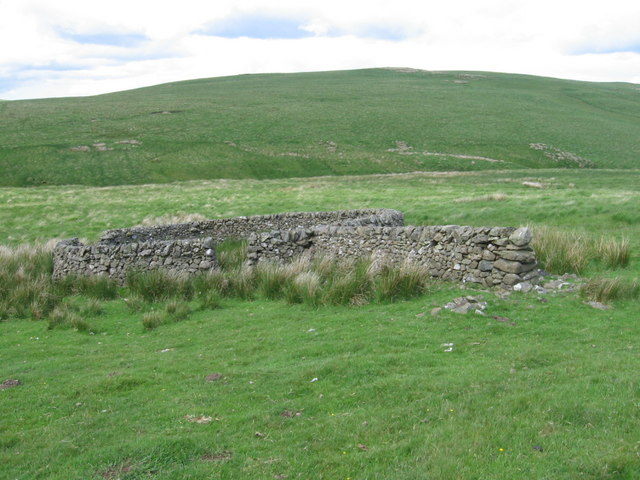 Sheepfold below Macrule Hill near to Priesthope Burn