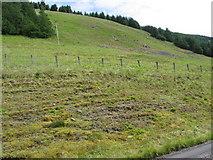 NT0920 : Craig Law from Fruid track by Chris Wimbush