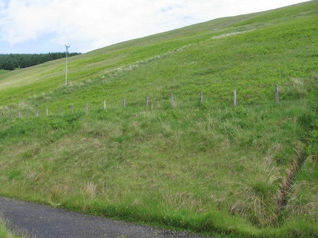 Hillside of Brawns Dod