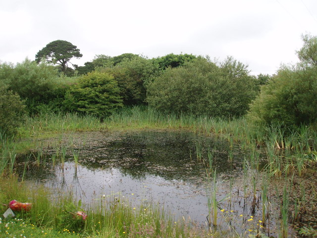 Pond near Crahan