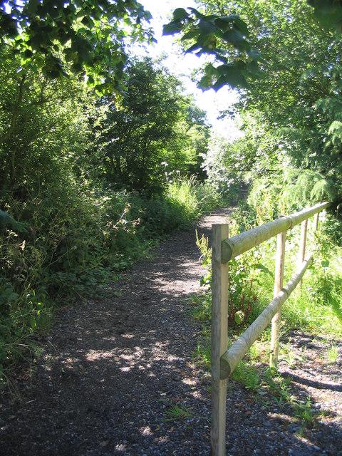 New bridleway - West Hanningfield