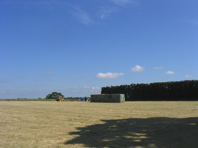 Hay Making - West Hanningfield