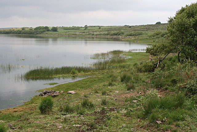 The Shoreline of Stithians Lake