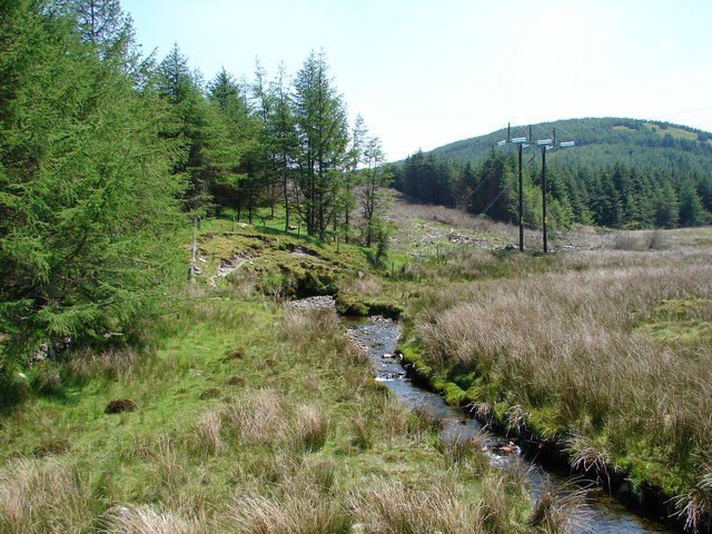 Stream By Dyall Faen Forestry