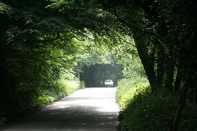 Monkton: by Viney Lane Cross