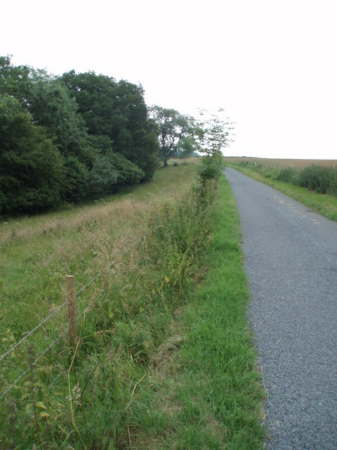 Road to Upper Lutheredge Farm