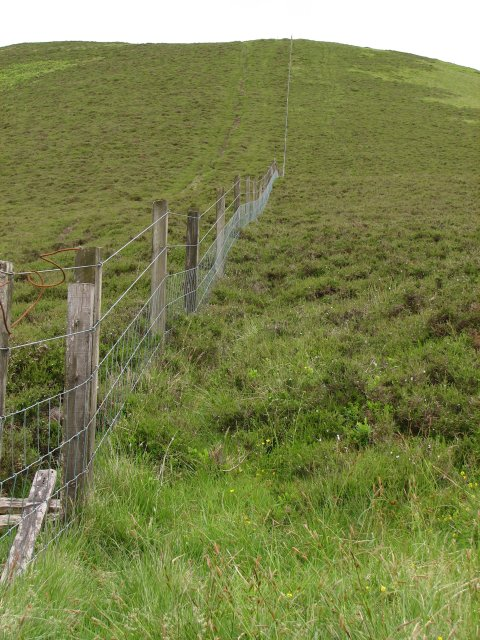 Fence on Clover Law