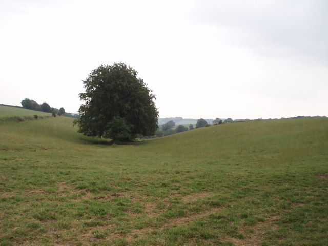 Valley head