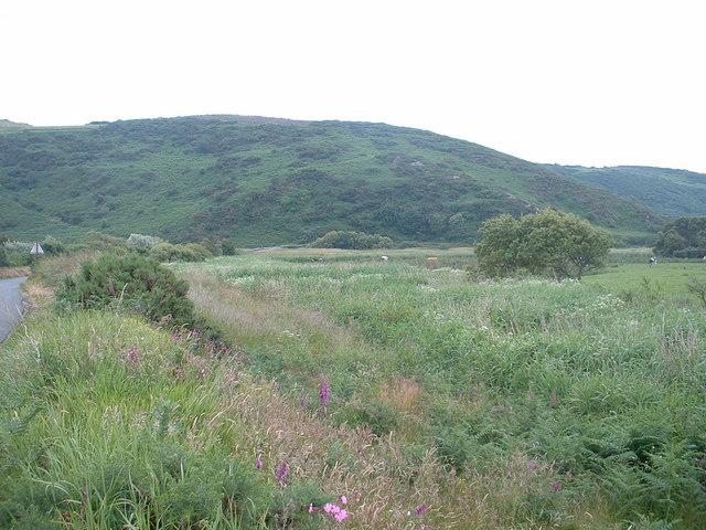 Farmland at Bont Newydd