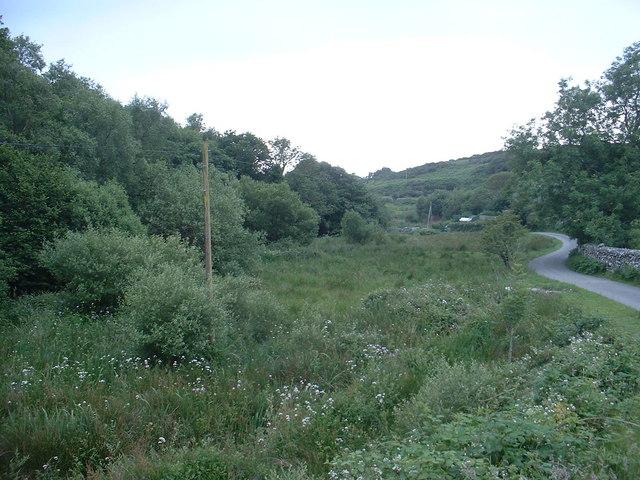 Scrubland near Llanfair