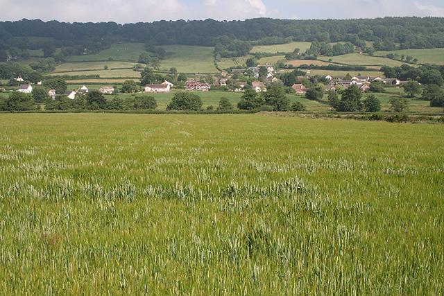 Luppitt: towards Rawridge