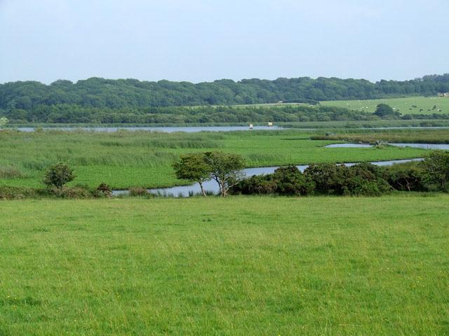 View over fields looking towards Llyn Llywenan