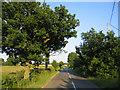 TL1033 : Country road, Lower Gravenhurst, Beds by Rodney Burton