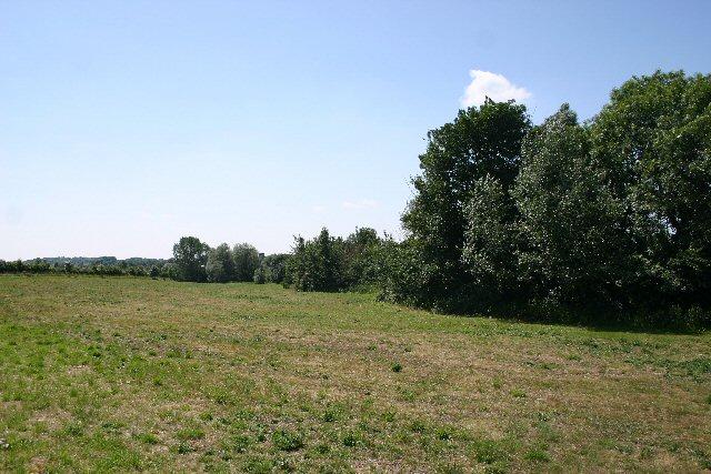 Set-aside land at Denston