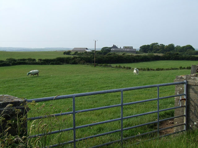 Grazing land to the North of Llechcynfarwy