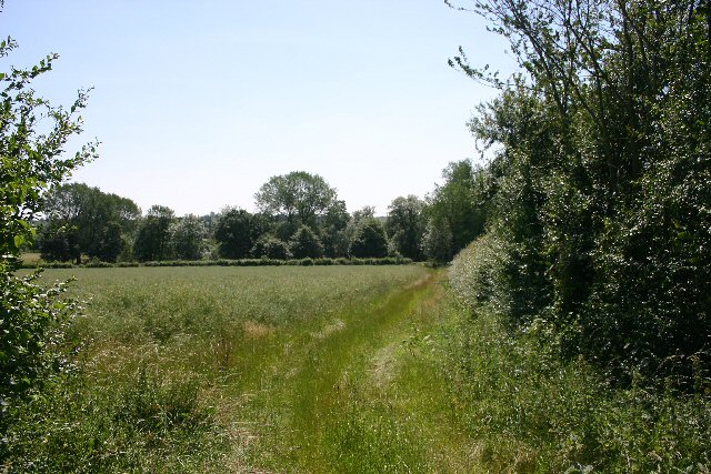 Track between Denston and Stansfield