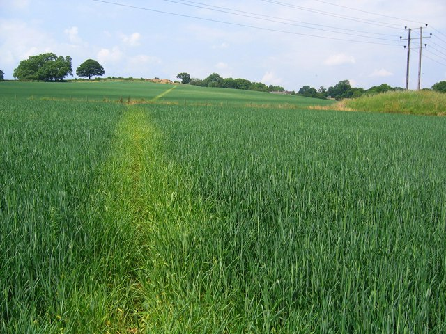 Footpath from South Wingfield to Wessington