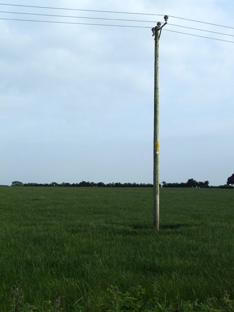 Electricity pole in a field