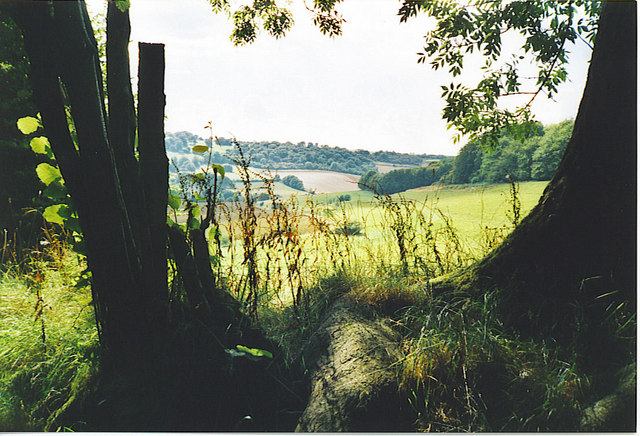 Berkshire Downs, North-east of Combe.