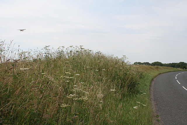 Dunkeswell: near the airport