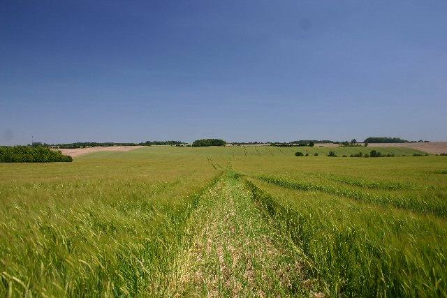 Footpath from Clopton Green to Rede.