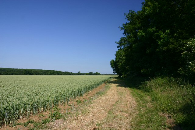 Footpath to Rede