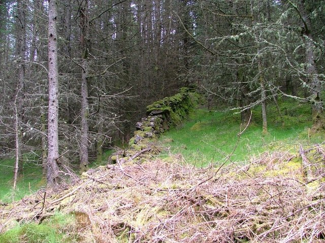 Ruined Wall. Langamull Forest
