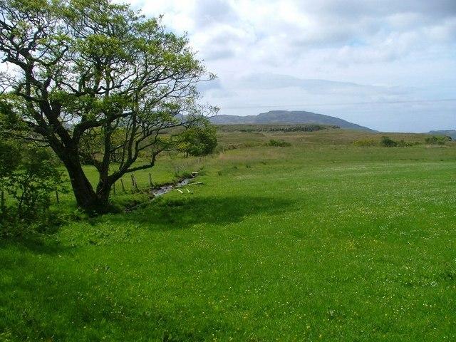 Fields Near Torloisk House