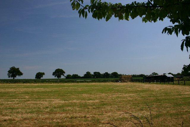 Fields at Bradfield Combust