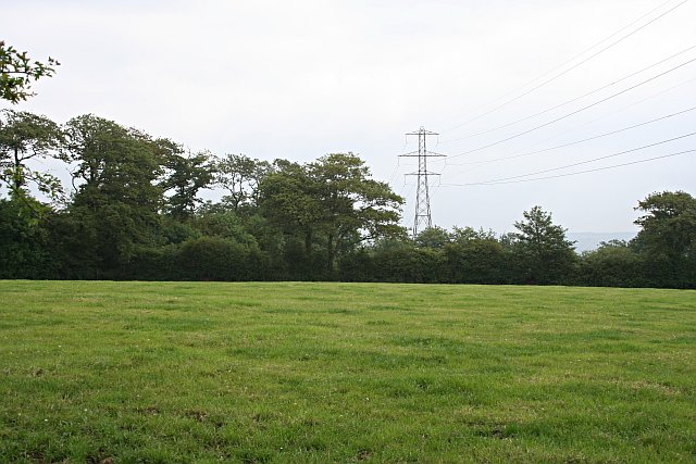 Grass Field and Powerline