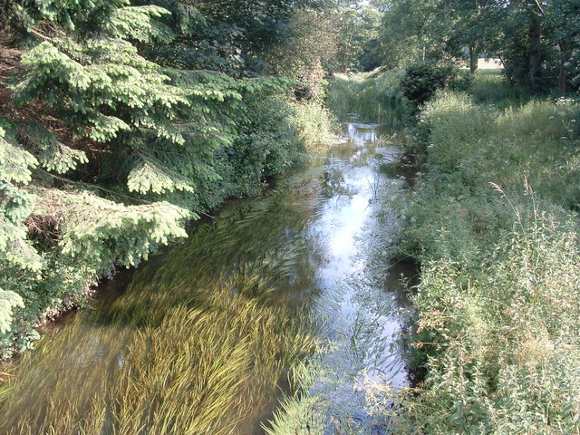 River Perry at Halston Gardens
