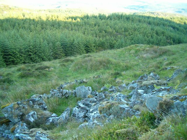 Ruin on the slopes of Creag Buireinich
