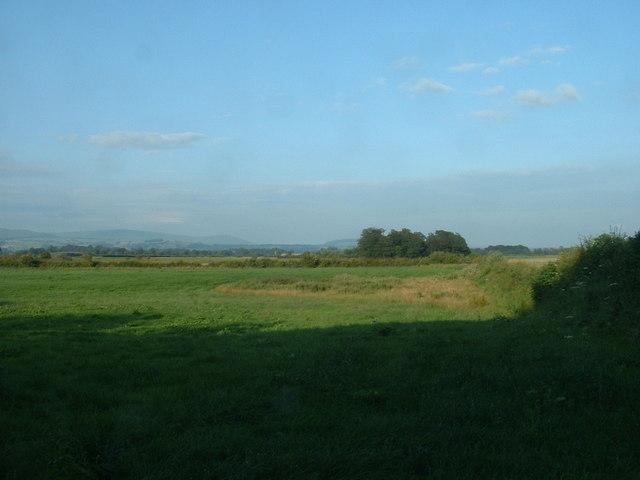 Farmland near Pancake Wood