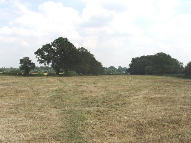 Footpath across mown field, near South Heath