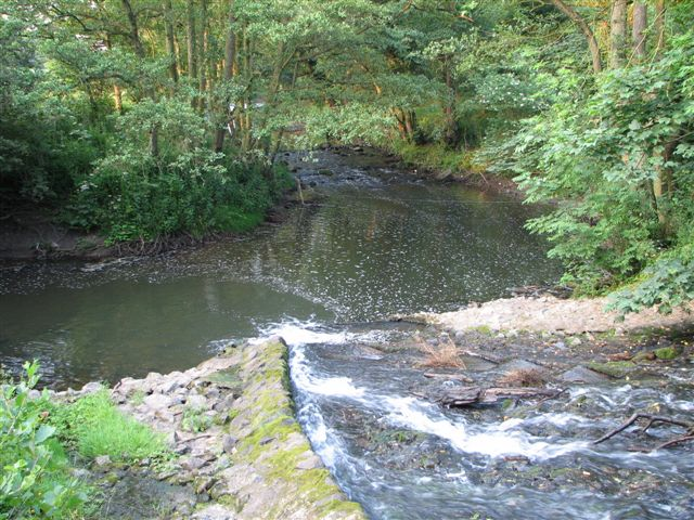 Coul Beck joining the River Leven