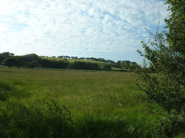 Farmland near Efailnewydd