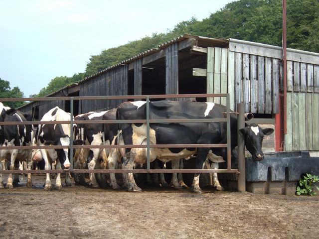 Winkley Hall Farm, Hurst Green
