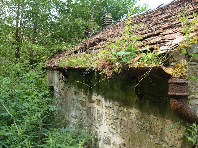 Derelict building near Winkley Hall