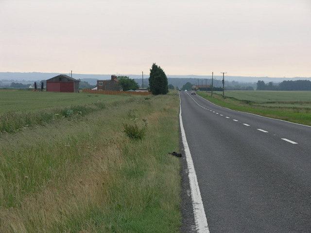 Misty Morning Farmland