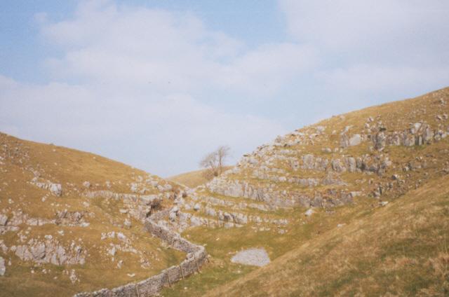 Limestone outcrop at Bordley