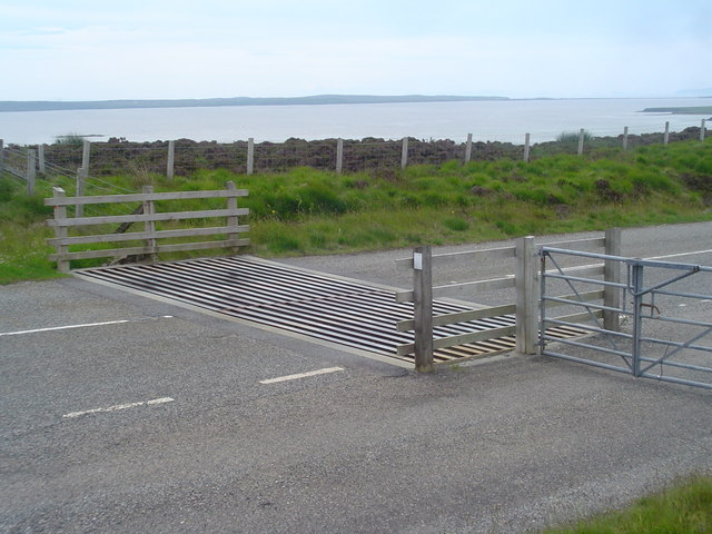 Cattle Grid at Gress