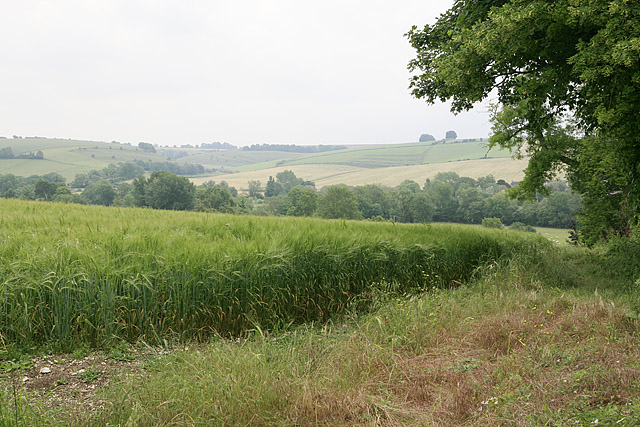 View from footpath east of Homington House, Coombe Bissett