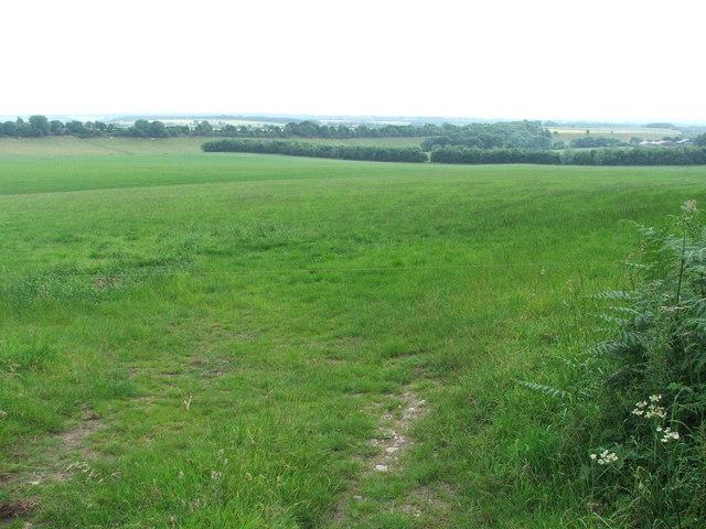 Farmland at Rawcliff Top.