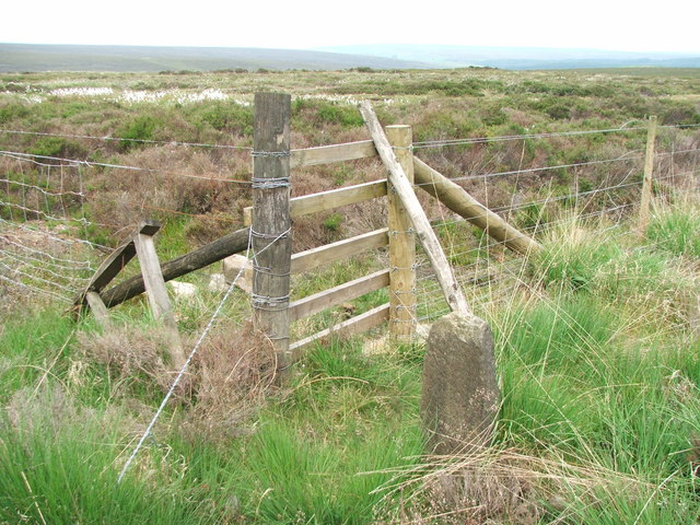 Boundary Stone in Cropton Forest.