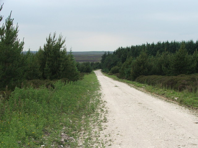 Cropton Forest at Middleton Moor.