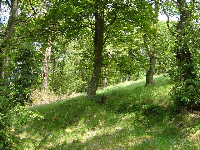 Langber Plantation