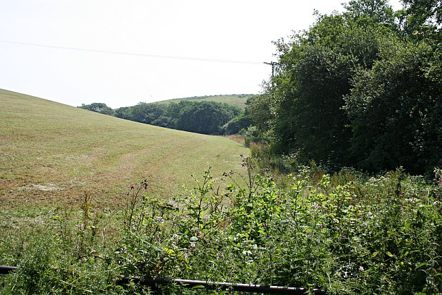 Field and Valley Bottom Woodland