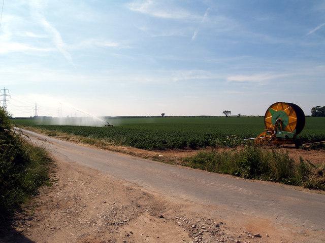 Crop Irrigation near North Wold Farm