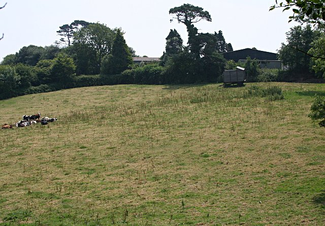 Pasture and Farm